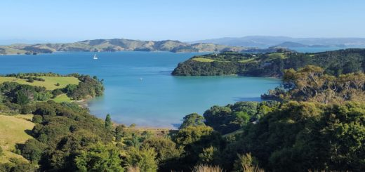 Waiheke Island New Zealand Nature And Landscape Sea